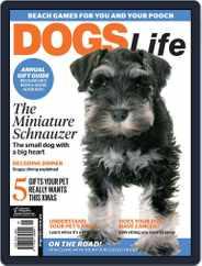 Dogs Life Magazine (Digital) Subscription November 1st, 2017 Issue