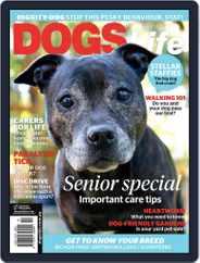 Dogs Life Magazine (Digital) Subscription September 1st, 2016 Issue