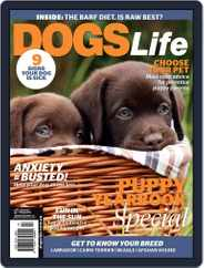 Dogs Life Magazine (Digital) Subscription December 16th, 2015 Issue