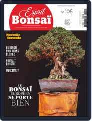 Esprit Bonsai (Digital) Subscription April 1st, 2020 Issue