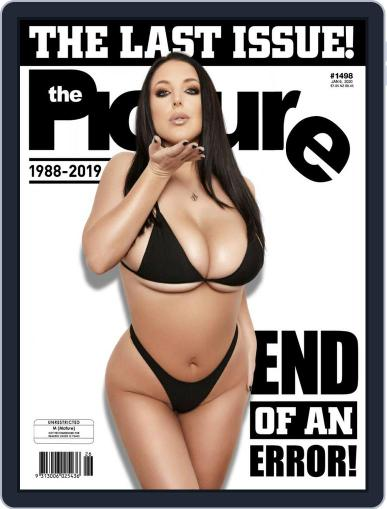 The Picture (Digital) Cover