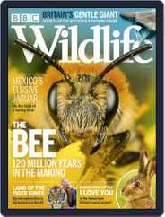 Bbc Wildlife (Digital) Subscription July 1st, 2020 Issue
