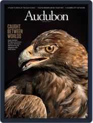 Audubon (Digital) Subscription March 18th, 2019 Issue