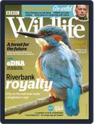 Bbc Wildlife (Digital) Subscription May 1st, 2020 Issue