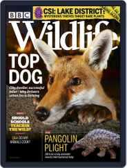 Bbc Wildlife (Digital) Subscription March 1st, 2020 Issue