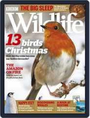 Bbc Wildlife (Digital) Subscription December 1st, 2019 Issue