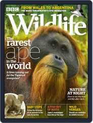 Bbc Wildlife (Digital) Subscription September 1st, 2019 Issue