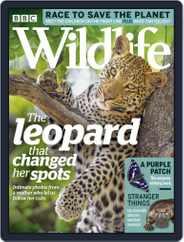 Bbc Wildlife (Digital) Subscription July 1st, 2019 Issue