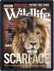Bbc Wildlife Magazine (Digital) Subscription August 1st, 2020 Issue