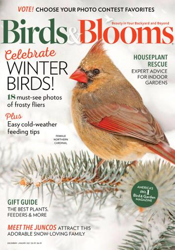 Birds & Blooms Magazine December 1st, 2020 Issue Cover