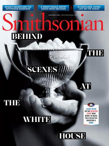 Smithsonian Magazine November 1st, 2020 Issue Cover
