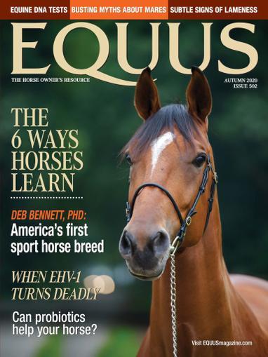 Equus Magazine August 17th, 2020 Issue Cover