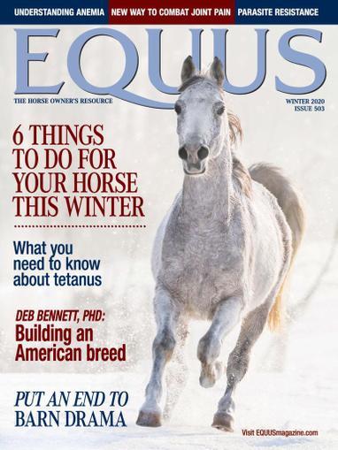 Equus Magazine October 26th, 2020 Issue Cover
