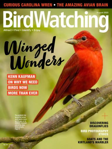 Birdwatching Magazine July 1st, 2020 Issue Cover
