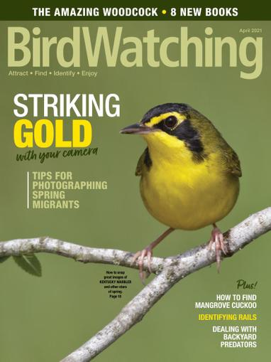 Birdwatching Magazine March 1st, 2021 Issue Cover