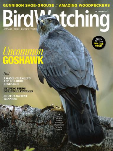 Birdwatching Magazine September 1st, 2021 Issue Cover