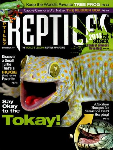Reptiles Magazine Cover