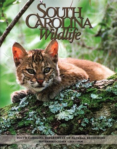 South Carolina Wildlife Magazine Cover